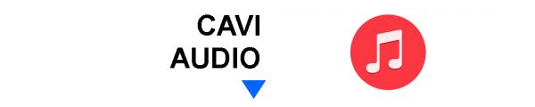 Cavi Audio